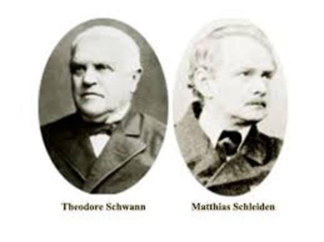 Schleiden y Shawann (Establecio la teoria celular)