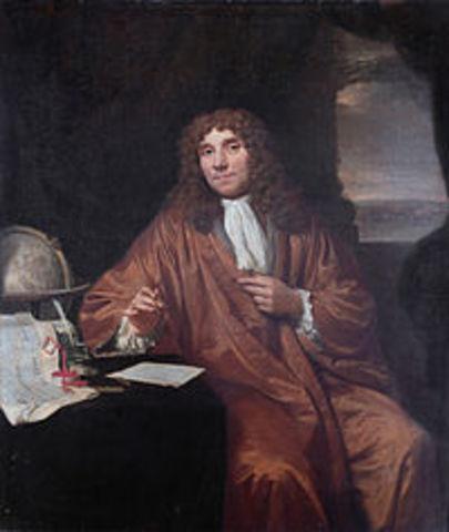 Anton Leewenhoek (descubre los protozoos)