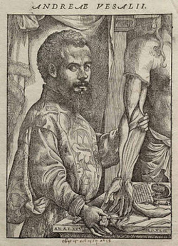 Andres Vesalio (publico estructura del cuerpo humano)