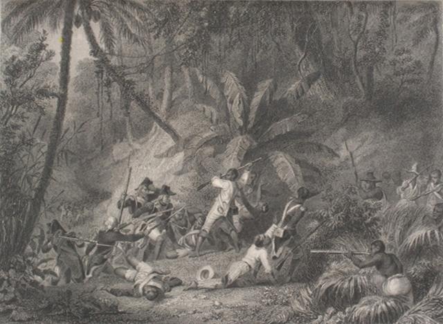 Battle of Snake Gully (Haitian Revolution)