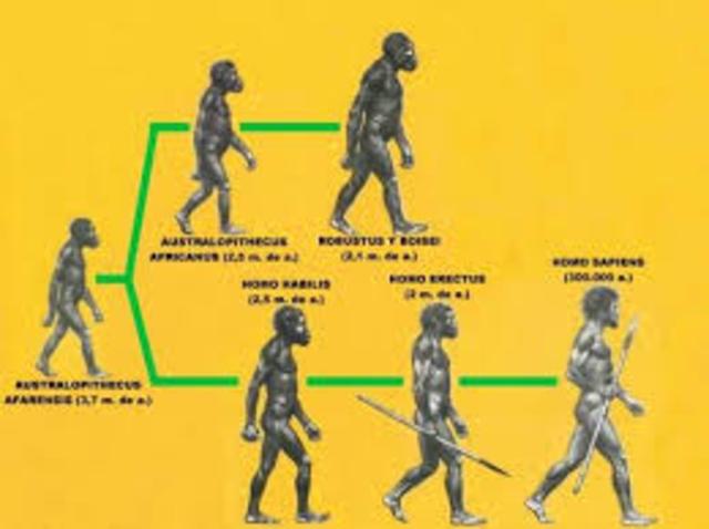 PRIMERA TEORIA DE LA EVOLUCION BIOLOGICA