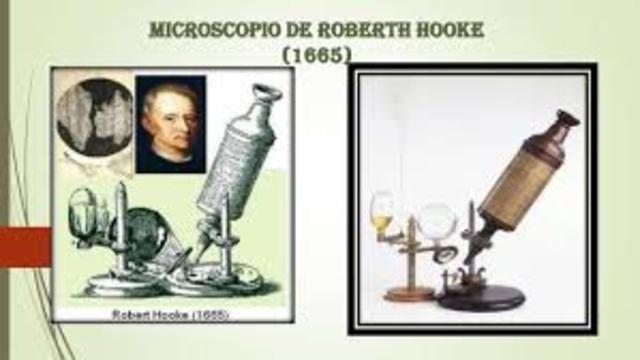 MICROSCOPIO POR ROBERT HOOKE