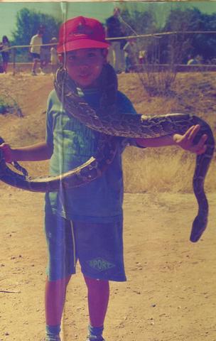 mi primer safari