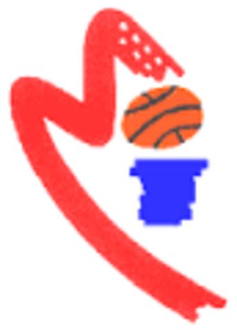 Realizo el curso de entrenadora de baloncesto