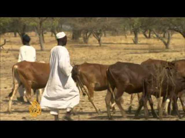 Sudanese government gives nomadic tribes the job to resolve the conflict.