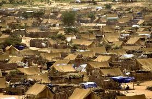 UN Refugee Agency build camps