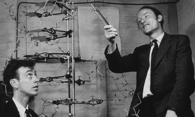 James Watson and Francis Crick's paper on DNA structure