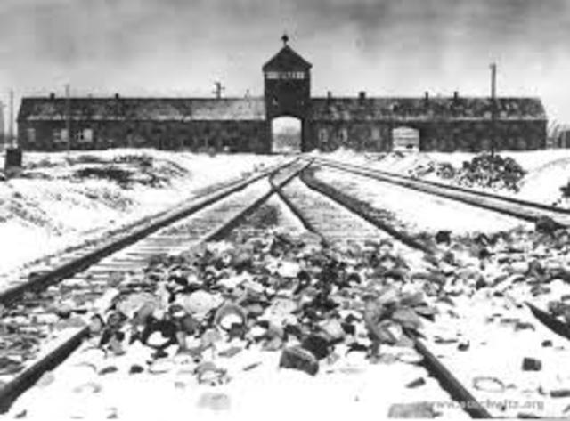 Jews sent to Auschwitz.