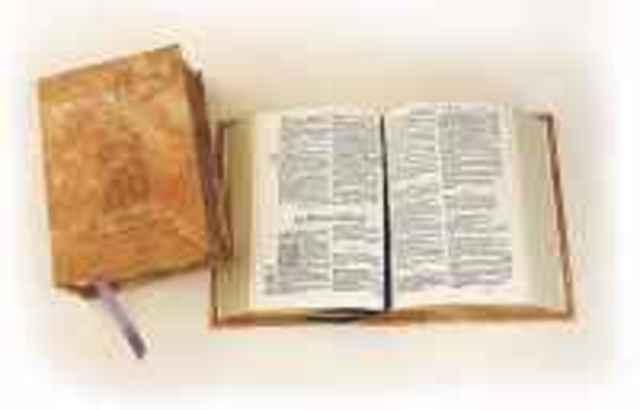 La primera version de la biblia 393 D.C