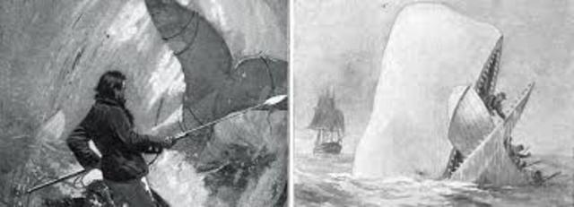 Melville Publishes Moby Dick