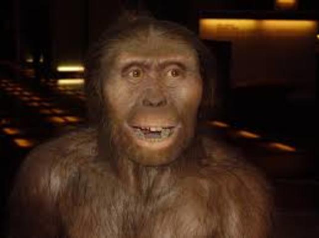 Caracteristicas del Australopithecus afarensis