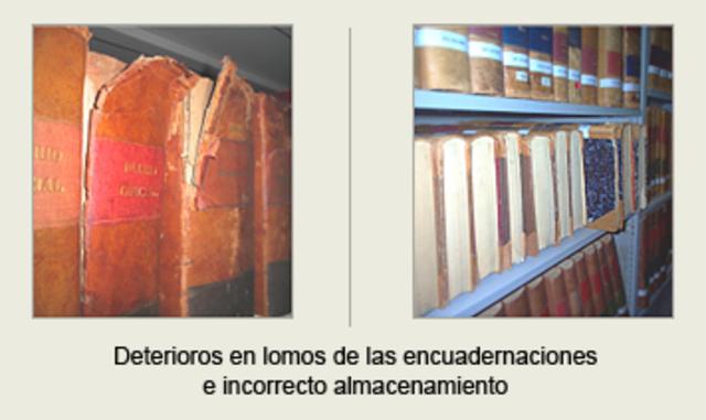 Archivo Anexo