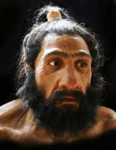 Características del homo neanderthalensis