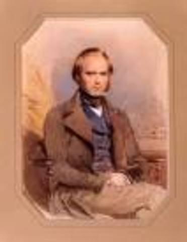 First Essay by Darwin
