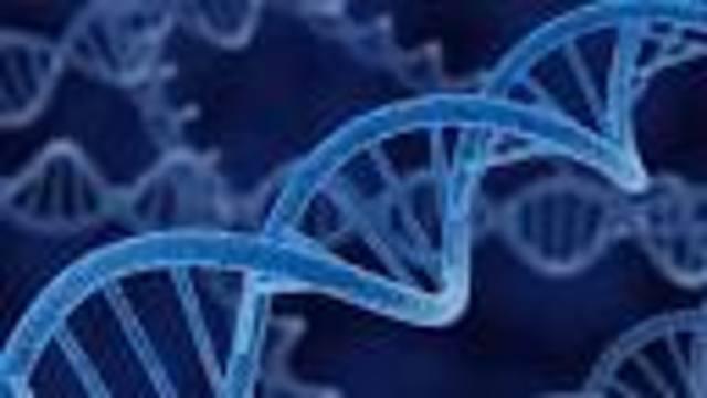 Genetic material verified