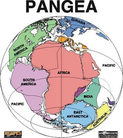 Pangaea - 250 million years ago – Paleozoic era