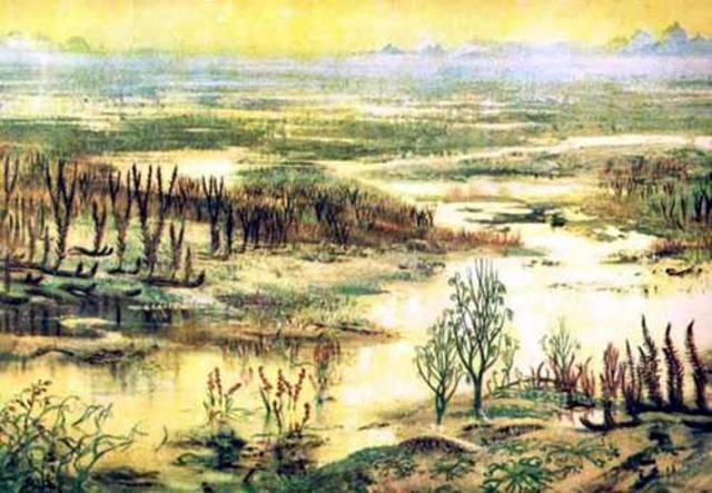 Plants and Animals on land - 700 million years ago – Paleozoic era