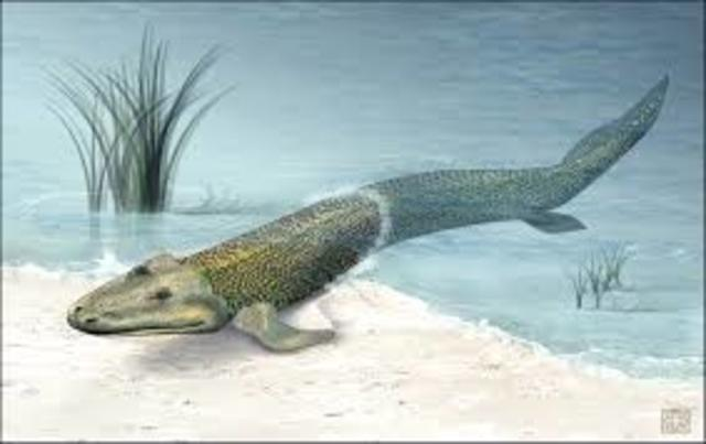 Reptiles - 370 million years ago – Paleozoic era