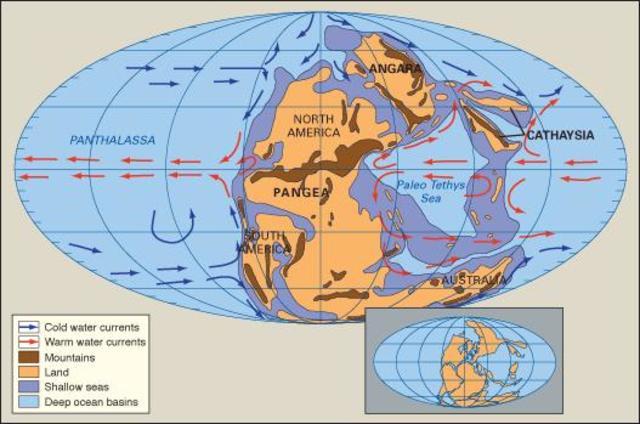 Shallow Seas covering North America - 299 million years go - Paleozoic era