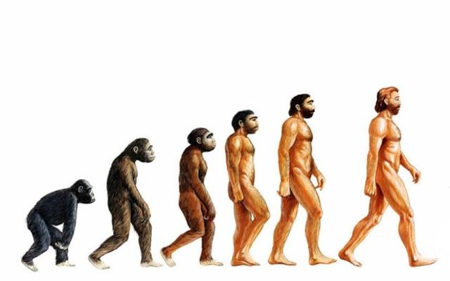 Humans - 1 million – 2 million years ago – Cenozoic era