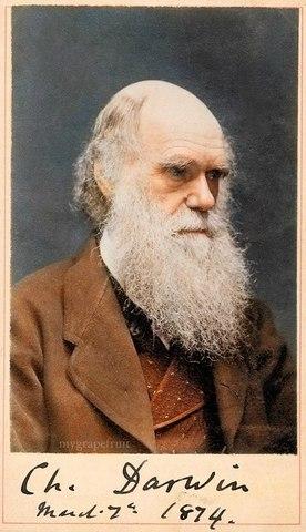 Darwin writes about Enviroment