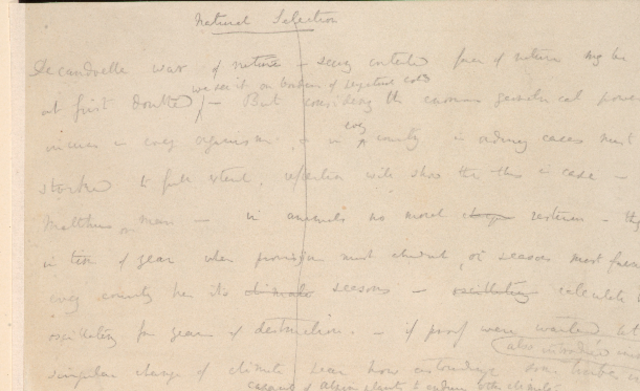Charles Darwin's First Essay on Natural Selection