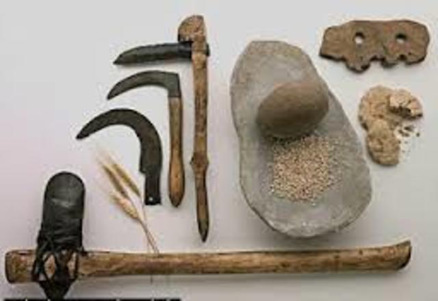 Edad de Piedra