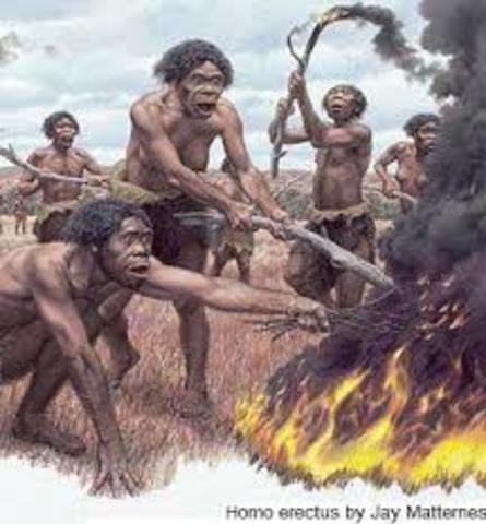 Dominio del fuego: Homo erectus  (22h 26min 34s)