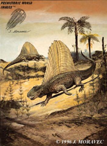La extinción del Pérmico-Triásico (20 dias 6 horas 40 minutos 0 seg)