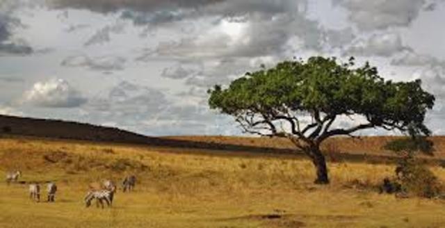 CAMBIO CLIMÁTICO SELVA-SABANA EN ÁFRICA (23h 48min)