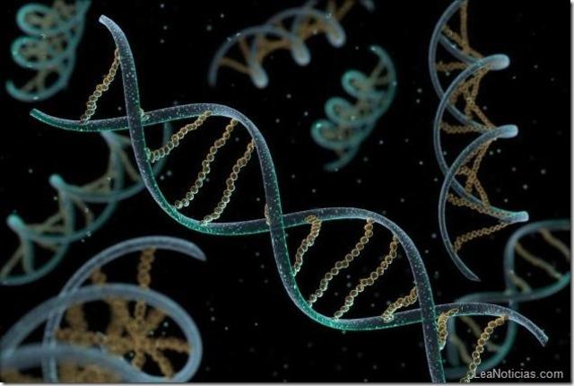 Descubrimiento del ADN (23h 59min 59s)