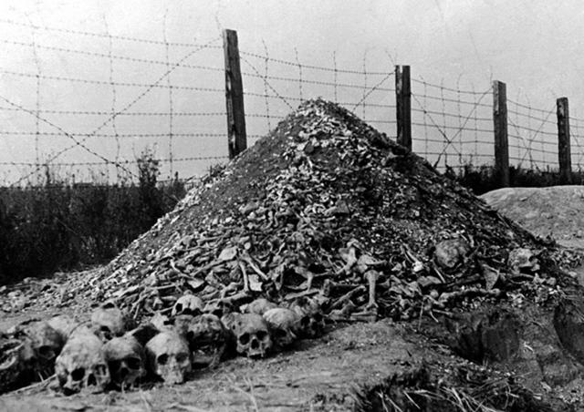 Discovery of Majdanek