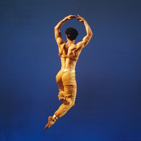 Telstra Ballet Dancer Award