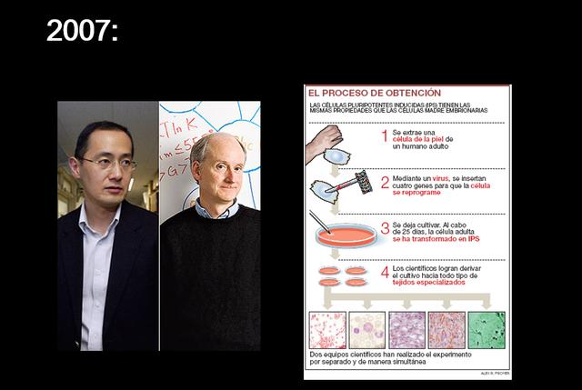 James Thompson y Shinya Yamanaka. Transformación de células de la piel humana en células madre embrionarias.
