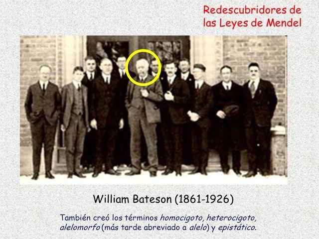 6 William Bateson propone el término «genética».