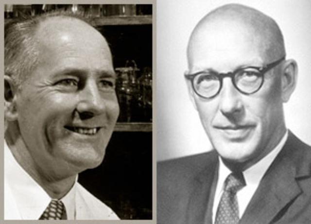 George W. Beadle y Edward Tatum.