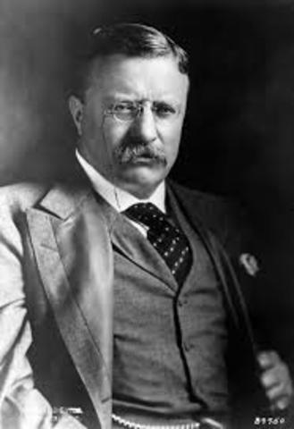 Theodore Roosevelt's Inauguration