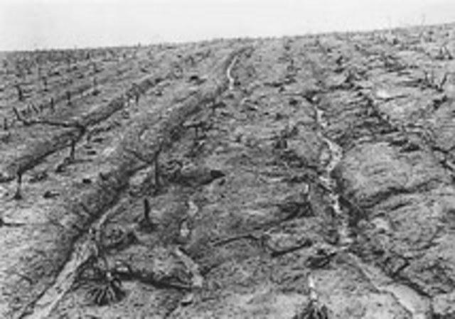 Soil Erosion Service