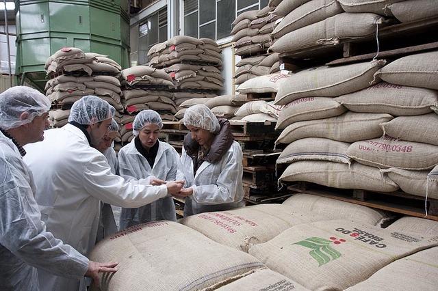 Desarrollo de la industria cafetera