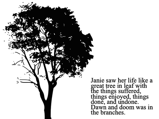 Janie begins her recollection/ Chapter 2