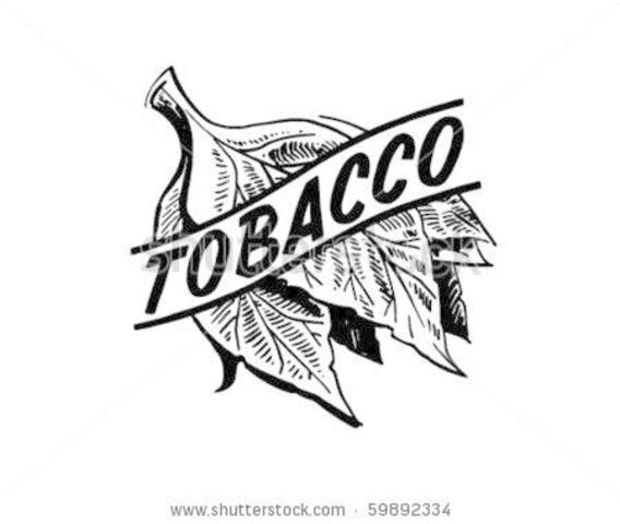 Tobacco: Colonial Cultivation Methods