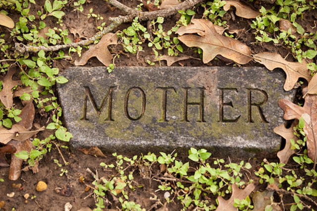Newton's Mother Buried