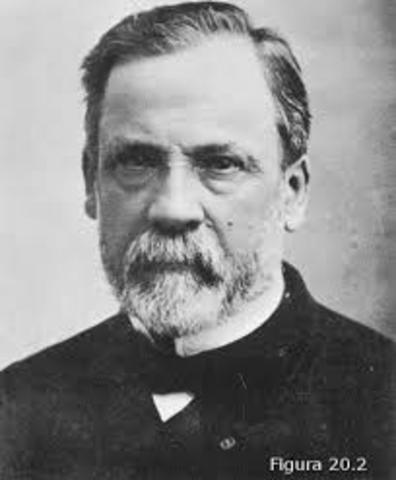 Édouard Chatton