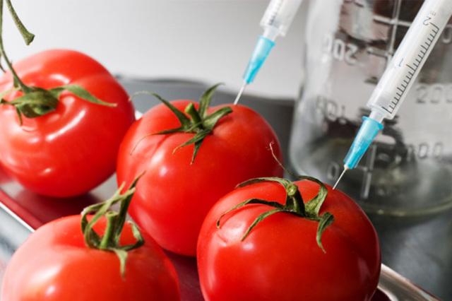 Tomate Flavr-Savr