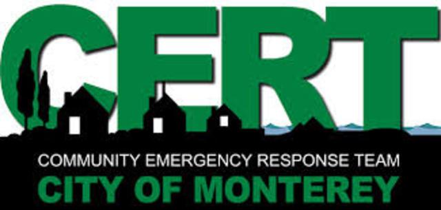 DARPA forma el equipo de respuesta de emergencia informatica (CERT)