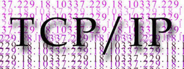 El protocolo de control de trnsmision/Protocolo internet (TCP/IP) se transforma en el lenguaje universal de la internet,