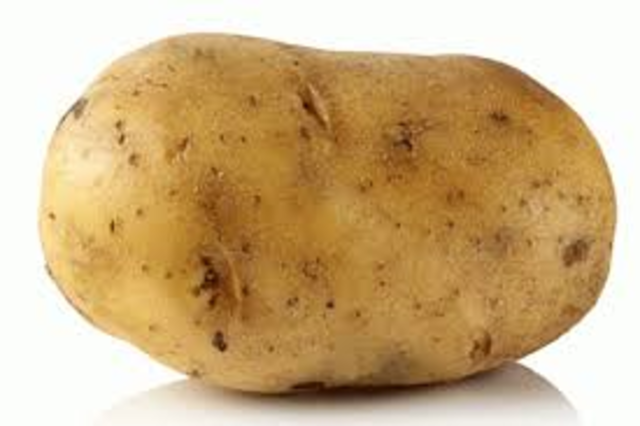 potato population boom
