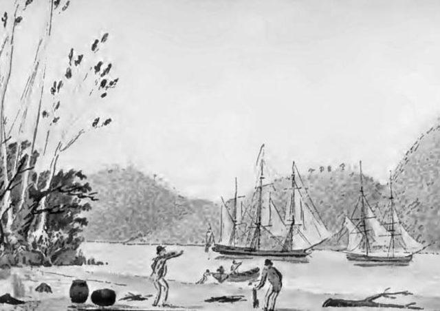 Second Breadfruit Voyage