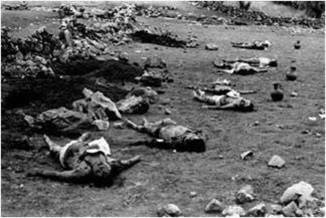 Parsley Massacre