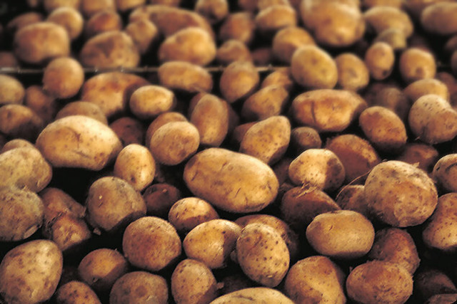 They Founded The Potatoes.